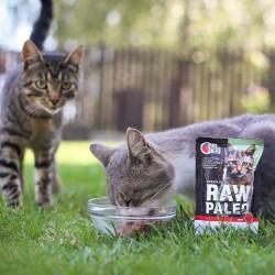 RAW PALEO Sterilised karma mokra dla kotów - wołowina