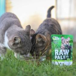 RAW PALEO Sterilised karma mokra dla kotów - dziczyzna