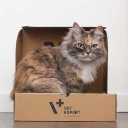 RAW PALEO karma mokra dla kotów dorosłych - mix smaków