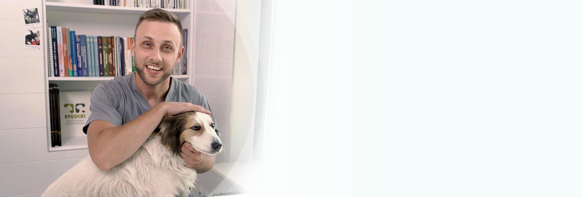Czy łączenie karmy mokrej i suchej jest zdrowe dla psa?