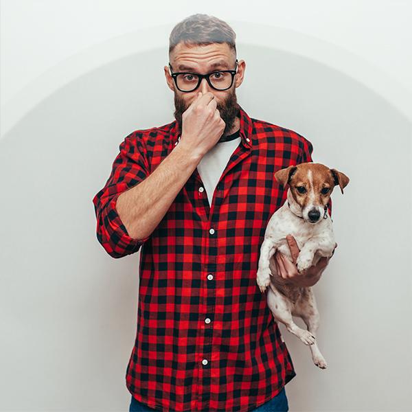 Jak skutecznie usunąć zapach moczu kota lub psa? Obalamy mity.